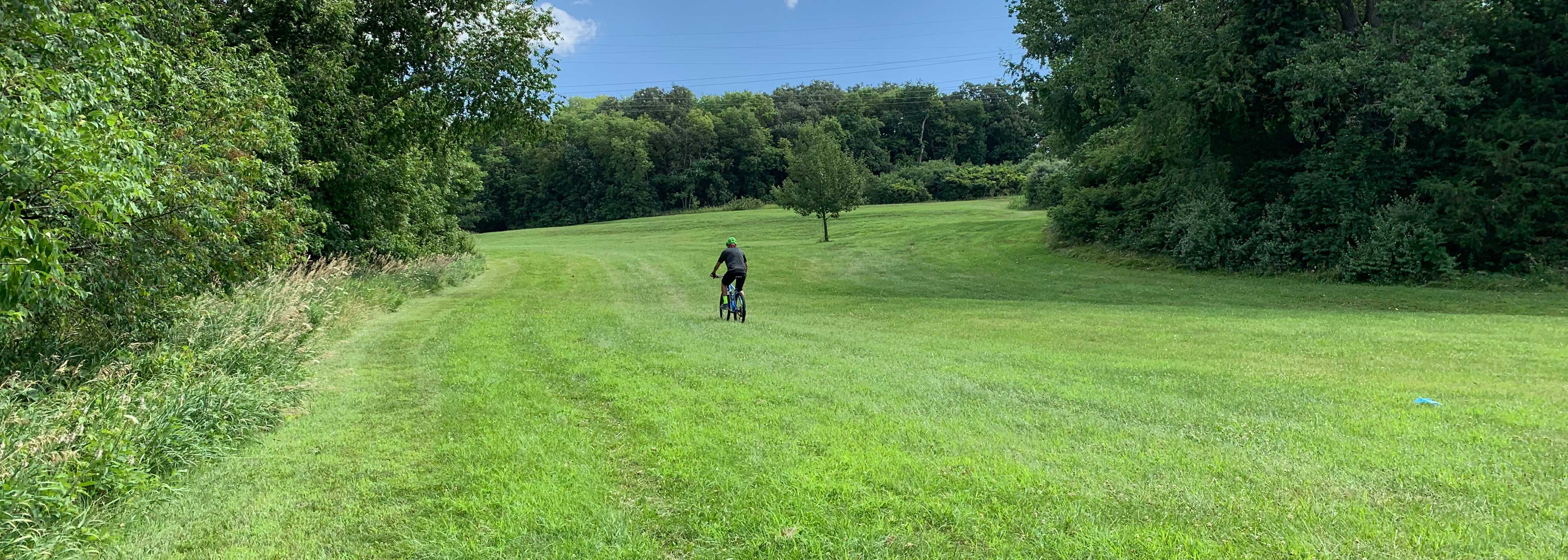 Field, mountain bike, future trail, trees, greenery