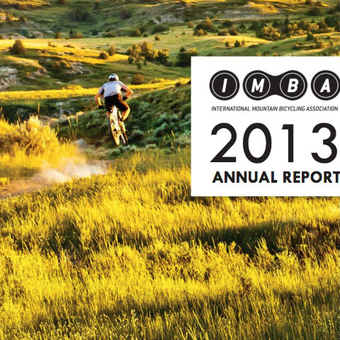 2013 Annual Report Image